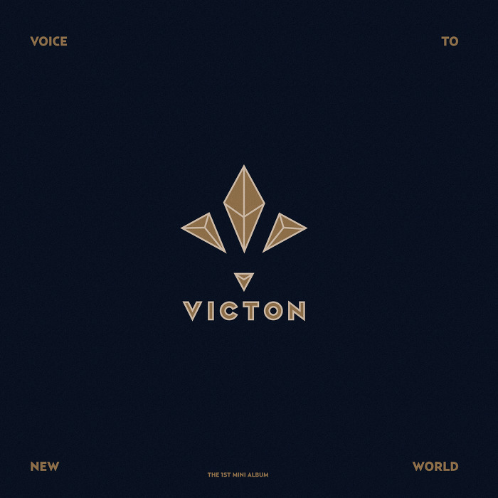 1st_mini_voice_to_new_world_cover